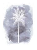 Watercolor Gray B Palm