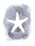 Watercolor Gray Starfish