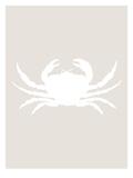 Beige White Crab