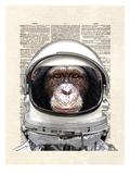 Space Chimp Reproduction d'art par Matt Dinniman