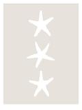 Beige White Starfish Vertical