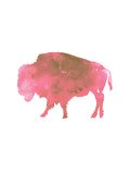 Watercolor Pink Buffalo