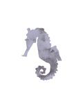 Watercolor Gray Seahorse
