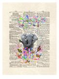 Elephant Butterflies