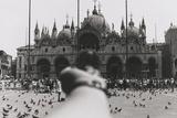 San Marco Reproduction photo par Ai Weiwei