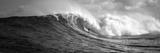 Surfer in the Sea  Maui  Hawaii  USA