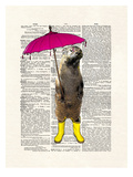 Rainy Day Otter Reproduction d'art par Matt Dinniman