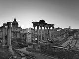 Roman Forum  Rome  Lazio  Italy  Europe