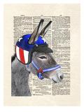 Eli Wonder Donkey Reproduction d'art par Matt Dinniman