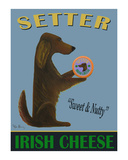 Setter Irish Cheese