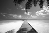 Wooden Jetty Out to Tropical Sea  Maldives  Indian Ocean  Asia