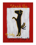 Stand Up - Stupid Pet Trick 5