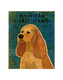 American Cocker Spaniel (buff)