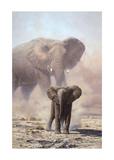 Amboseli Child African Elephant