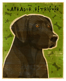 Black Lab (NEW)