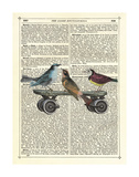 Birds on a Skateboard