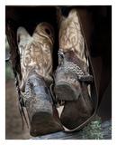 Boots 'n Spurs V
