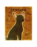 Chihuahua (black)
