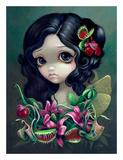 Carnivorous Bouquet Fairy