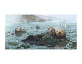 Carmel Coast Otters Reproduction d'art par John Dawson
