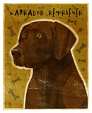 Chocolate Lab (NEW)
