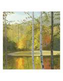 Cooper Lake  Autumn
