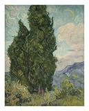 Cypresses  1889