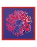 Daisy, c.1982 (blue & red) Reproduction d'art par Andy Warhol