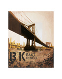 East River & Manhattan Bridge