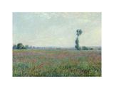 Poppy Field  1881