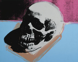Skull  1976 (white on blue and pink)