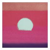 Sunset  1972 (fuchsia)