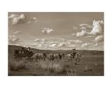 Sombrero Stagecoach