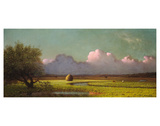 Sunlight and Shadow: The Newbury Marshes  c 1871/1875