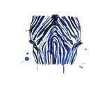 The Blue Zebra