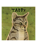 Tabby (grey) (square)