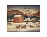 Winter Sheep II