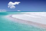 Tropical Simplicity