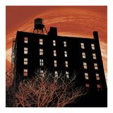 Tribeca Twilight