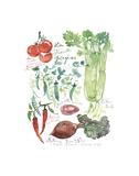 Vegetable Poster