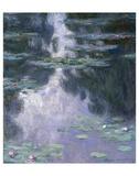 Water Lilies (Nympheas)  1907