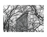 Veiled Flatiron Building (b/w)