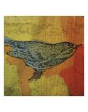 Warbler No 1