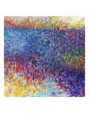 Vibrant Meadow