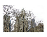 Woolworth Building from City Hall Park