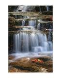 Waterfall Whitecap Stream