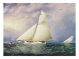 Yacht Race in New York Harbor