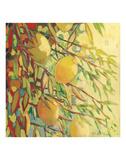 Four Lemons Reproduction d'art par Jennifer Lommers