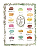 French Macaron Flavor Chart