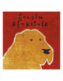 Golden Retriever (square)